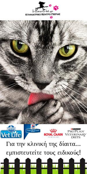 κλινική δίαιτα ξηρά τροφή γάτα