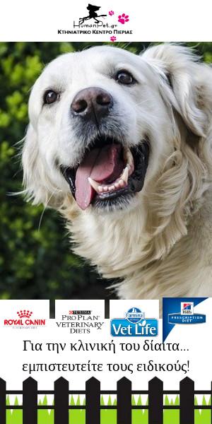 κλινική δίαιτα ξηρά τροφή σκύλος