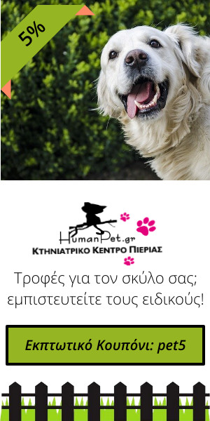 τροφή σκύλου στο humanpet